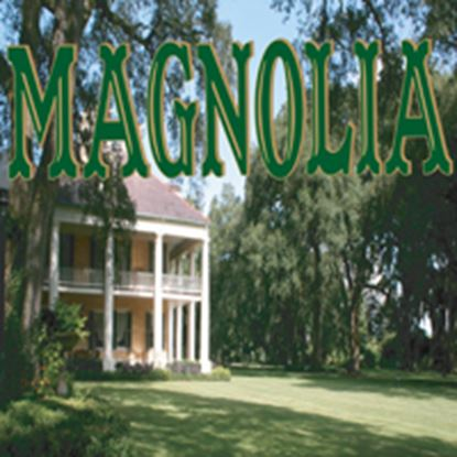 Picture of Magnolia cover art.