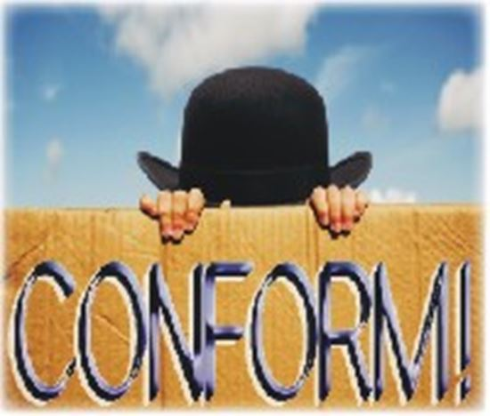 Picture of Conform! cover art.