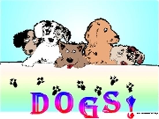 Picture of Dogs! cover art.