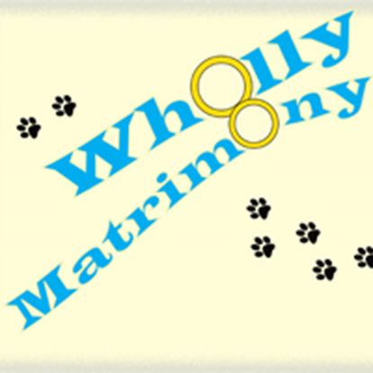 Picture of Wholly Matrimony cover art.