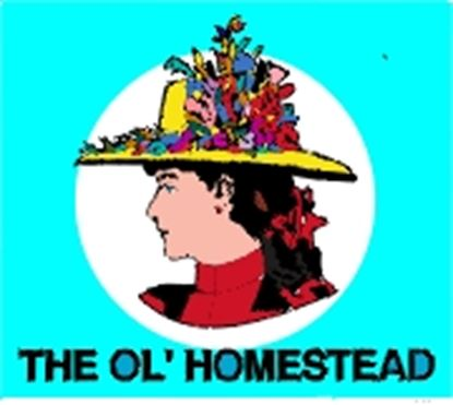 Picture of Ol' Homestead cover art.
