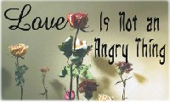 Picture of Love Is Not An Angry Thing cover art.