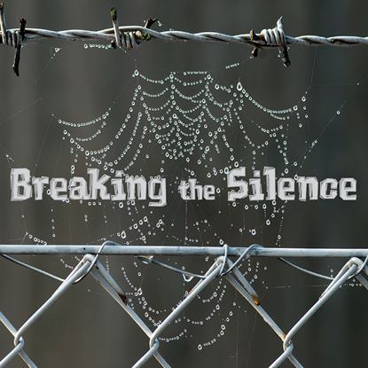 Picture of Breaking The Silence cover art.