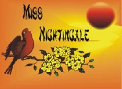 Picture of Miss Nightingale cover art.