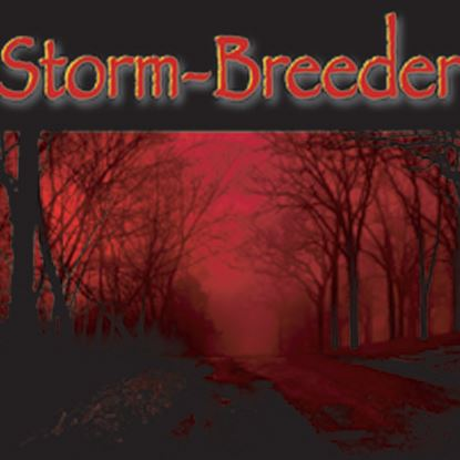 Picture of Storm-Breeder cover art.